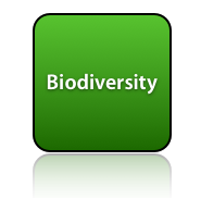 Biodiversity - Time4Change